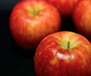 りんご狩りの時期は関東の長野が穴場でおすすめ!飯田、松川、安曇野で