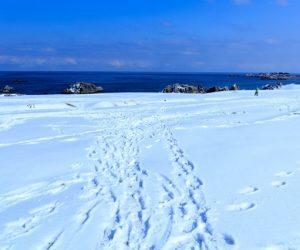 女性はスノーブーツでもオシャレに!雪で滑らないレディース靴はおすすめ